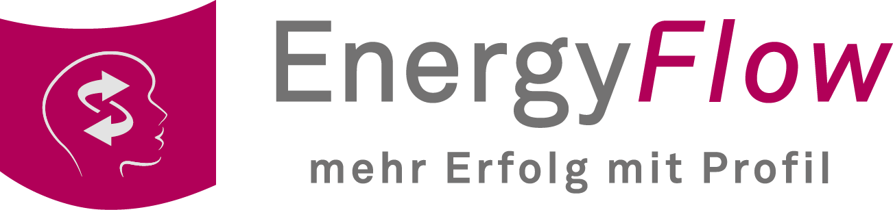 150819-energy flow-logo-small